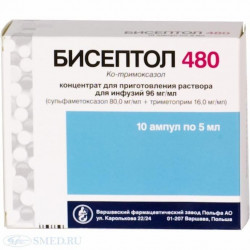 Buy Biseptol ampoule 480mg / 5ml №10