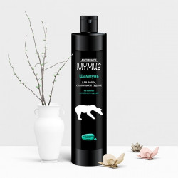 Buy Active mummy shampoo for hair prone to gray hair 330ml