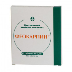 Buy Feokarpin tablets №40