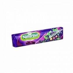 Buy Naturino pastilles (black currant)
