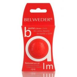 Buy Belweder (Belvedere) lip balm 7.5g black currant karite q10