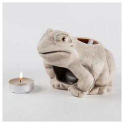 Buy Aroma lamp frog